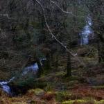 Parque Nacional de Glendalough - lápiz creativo